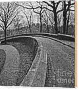 Stone Road And Path Wood Print