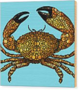 Stone Rock'd Stone Crab By Sharon Cummings Wood Print