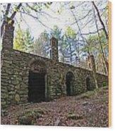 Stone Ruins Wood Print