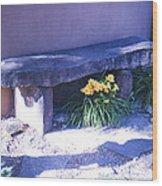 Stone Slab Bench 1 Wood Print