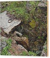 Stone Slid Away Wood Print