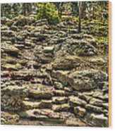 Stone Spring At Woodward Park 1 Wood Print