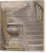 Stone Steps National Cathedral Wood Print