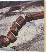 Stone Trees - 336 Wood Print