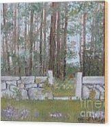 Stone Wall On Highland Ave Wood Print