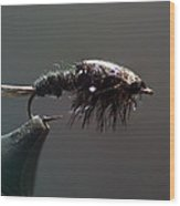 Stonefly Nymph Wood Print