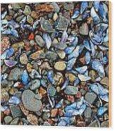 Stones And Seashells Wood Print