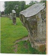Stones At Avebury Wood Print