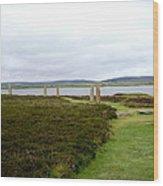 Stones In Arc Of Ring Of Brodgar Wood Print