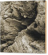 Stonewood Canyon - Square - Sepia Tone - Wonderwood Collection - Olympic Peninsula Wa  Wood Print