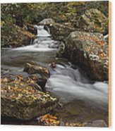 Stony Creek Falls Wood Print