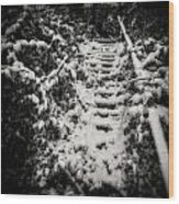 Stony Steps Covered With Snow Wood Print