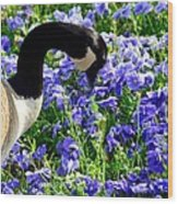 Stop And Smell The Flowers Wood Print