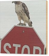 Stop Chemical Pollution Wood Print