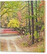 Stop - Beaver's Bend State Park - Highway 259 Broken Bow Oklahoma Wood Print by Silvio Ligutti