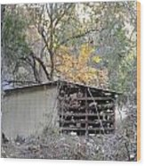 Storage Shed In Color Wood Print