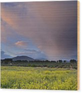 Storm At Sunset Wood Print