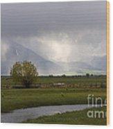 Storm Break Wood Print