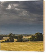 Storm Brewing Over Corn Wood Print