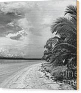 Storm Cloud On The Horizon Wood Print