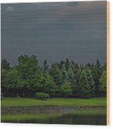Storm Clouds And Trees Wood Print