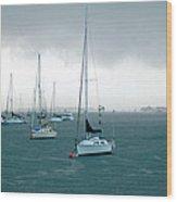 Storm Coming  Wood Print