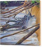 Storm Debris Wood Print