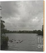 Storm In A Duck Pond Wood Print