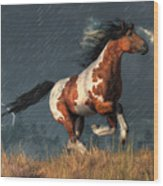 Storm Mustang Wood Print