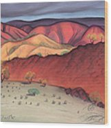 Storm Outback Australia Wood Print by Judith Chantler