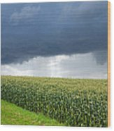 Storm Over Cornfield In Southern Germany Wood Print