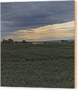 Storm Over The Yakima Valley Wood Print