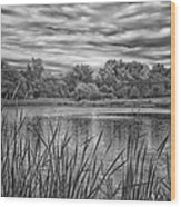 Storm Passing The Pond In Bw Wood Print