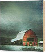 Storm Wood Print by Theresa Tahara