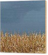 Stormy Corn Wood Print