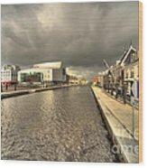 Stormy Day At Alphen Aan Den Rijn Wood Print