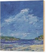 Stormy Day At Picnic Island Wood Print