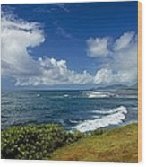 Stormy Day At The Beach Wood Print