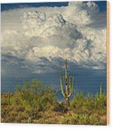 Stormy Desert Skies  Wood Print
