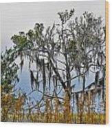 Stormy Marsh Cedar Tree Wood Print