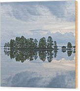 Stormy Morning On The Lake Wood Print