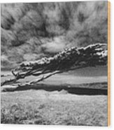 Stormy Promise Wood Print