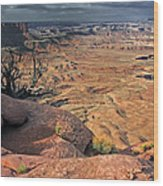 Stormy Skies In Canyonlands Wood Print