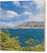 Stormy Surface Of Lake Wanaka In Central Otago On South Island Of New Zealand Wood Print