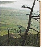 Stormy Tree Wood Print