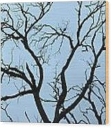 Stormy Trees Wood Print