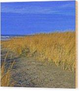 Stormy Walk On The Beach Iv Long Beach Wa Wood Print