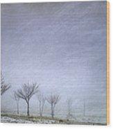 Stormy Wheather Wood Print