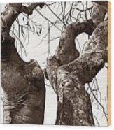 Story Tree Wood Print by Jennifer Apffel