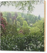 Stourhead Skyline Wood Print